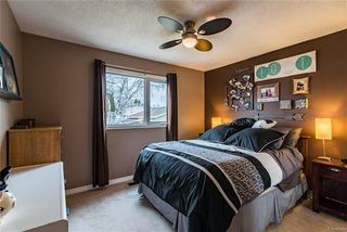 Photo 10: 148 Risbey Crescent in Winnipeg: Crestview Residential for sale (5H)  : MLS®# 1810954