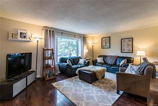 Photo 3: 148 Risbey Crescent in Winnipeg: Crestview Residential for sale (5H)  : MLS®# 1810954