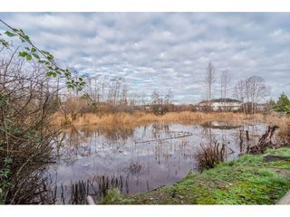 "Photo 20: 5323 REGATTA Way in Delta: Neilsen Grove House for sale in ""SOUTH POINTE"" (Ladner)  : MLS®# R2325709"