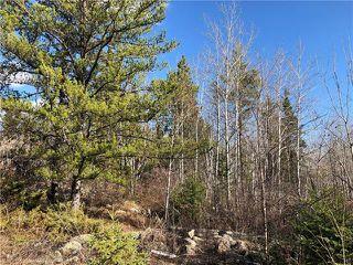 Photo 11: 120 Pine Ridge Drive in Alexander RM: Auglen Park Residential for sale (R28)  : MLS®# 1905051