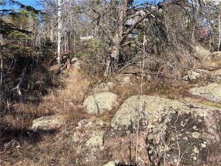 Photo 10: 120 Pine Ridge Drive in Alexander RM: Auglen Park Residential for sale (R28)  : MLS®# 1905051