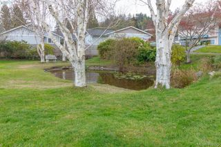 Photo 27: 5074 Cordova Bay Road in VICTORIA: SE Cordova Bay Single Family Detached for sale (Saanich East)  : MLS®# 408075