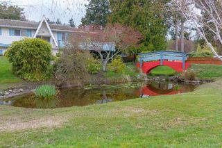 Photo 5: 5074 Cordova Bay Road in VICTORIA: SE Cordova Bay Single Family Detached for sale (Saanich East)  : MLS®# 408075