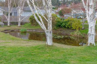 Photo 28: 5074 Cordova Bay Road in VICTORIA: SE Cordova Bay Single Family Detached for sale (Saanich East)  : MLS®# 408075