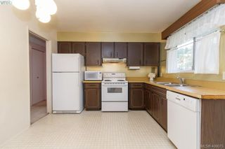 Photo 13: 5074 Cordova Bay Road in VICTORIA: SE Cordova Bay Single Family Detached for sale (Saanich East)  : MLS®# 408075