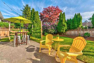 Photo 19: 19554 OAK Terrace in Pitt Meadows: Mid Meadows House for sale : MLS®# R2369640