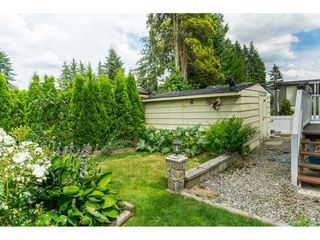 "Photo 15: 110 3665 244 Street in Langley: Otter District Manufactured Home for sale in ""Langley Grove Estates"" : MLS®# R2383716"