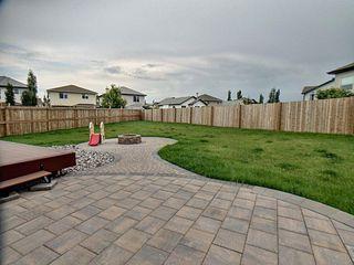 Photo 19: 12003 173 Avenue in Edmonton: Zone 27 House for sale : MLS®# E4164972