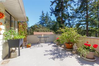 Photo 12: 4931 Old West Saanich Rd in VICTORIA: SW Royal Oak House for sale (Saanich West)  : MLS®# 831588