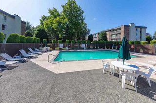 "Photo 25: 317 10631 NO. 3 Road in Richmond: Broadmoor Condo for sale in ""ADMIRALS WALK"" : MLS®# R2519951"