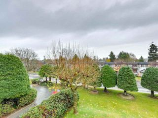 "Photo 11: 317 10631 NO. 3 Road in Richmond: Broadmoor Condo for sale in ""ADMIRALS WALK"" : MLS®# R2519951"