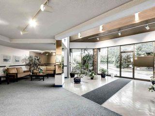 "Photo 22: 317 10631 NO. 3 Road in Richmond: Broadmoor Condo for sale in ""ADMIRALS WALK"" : MLS®# R2519951"