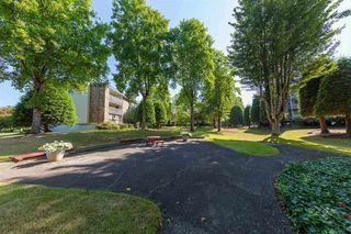 "Photo 28: 317 10631 NO. 3 Road in Richmond: Broadmoor Condo for sale in ""ADMIRALS WALK"" : MLS®# R2519951"
