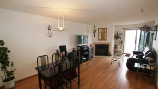 Photo 6: 303 1683 Plessis Road in Winnipeg: Transcona Condominium for sale (North East Winnipeg)