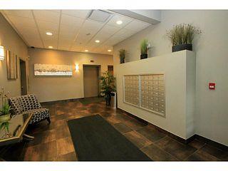 Photo 17: 214 1899 45 Street NW in CALGARY: Montgomery Condo for sale (Calgary)  : MLS®# C3588536