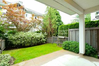 """Photo 17: 78 20760 DUNCAN Way in Langley: Langley City Townhouse for sale in """"WYNDHAM LANE"""" : MLS®# R2107044"""