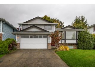 Photo 1: 12159 LINDSAY Place in Maple Ridge: Northwest Maple Ridge House for sale : MLS®# R2115551