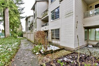 """Photo 14: 107 1955 SUFFOLK Avenue in Port Coquitlam: Glenwood PQ Condo for sale in """"OXFORD PLACE"""" : MLS®# R2144804"""
