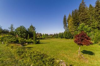 Photo 20: 12453 266 Street in Maple Ridge: Websters Corners House for sale : MLS®# R2149665