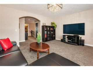 Photo 21: 264 RAINBOW FALLS Way: Chestermere House for sale : MLS®# C4117286