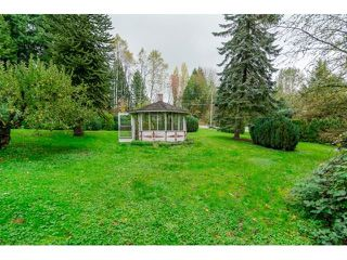 Photo 17: 3183 248 STREET in Langley: Home for sale : MLS®# R2012426