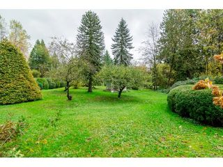 Photo 20: 3183 248 STREET in Langley: Home for sale : MLS®# R2012426