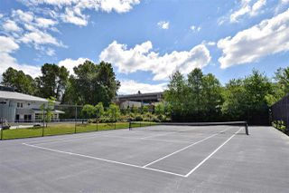 """Photo 17: 118 100 KLAHANIE Drive in Port Moody: Port Moody Centre Townhouse for sale in """"INDIGO"""" : MLS®# R2196752"""