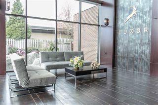 Photo 13: 326 12039 64 Avenue in Surrey: West Newton Condo for sale : MLS®# R2257723