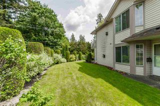 """Photo 19: 60 3110 TRAFALGAR Street in Abbotsford: Central Abbotsford Townhouse for sale in """"Northview"""" : MLS®# R2270607"""