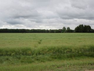 Photo 2: RR 253 Twp 620: Rural Westlock County Rural Land/Vacant Lot for sale : MLS®# E4130559