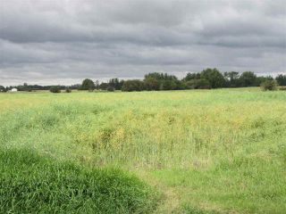 Photo 8: RR 253 Twp 620: Rural Westlock County Rural Land/Vacant Lot for sale : MLS®# E4130559