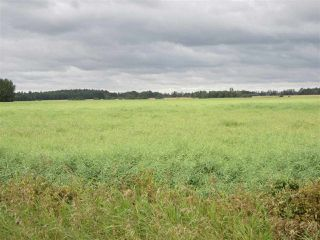 Photo 7: RR 253 Twp 620: Rural Westlock County Rural Land/Vacant Lot for sale : MLS®# E4130559