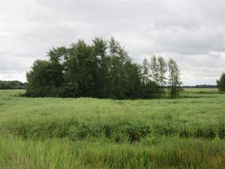 Photo 10: RR 253 Twp 620: Rural Westlock County Rural Land/Vacant Lot for sale : MLS®# E4130559