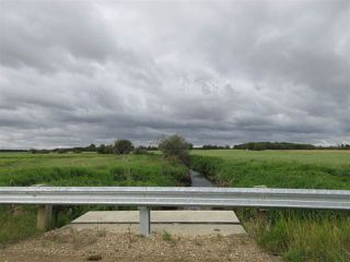 Photo 12: RR 253 Twp 620: Rural Westlock County Rural Land/Vacant Lot for sale : MLS®# E4130559