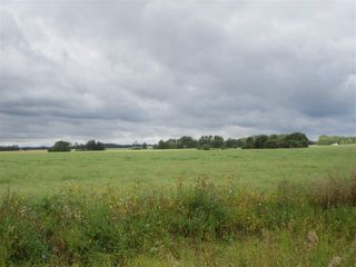 Photo 5: RR 253 Twp 620: Rural Westlock County Rural Land/Vacant Lot for sale : MLS®# E4130559