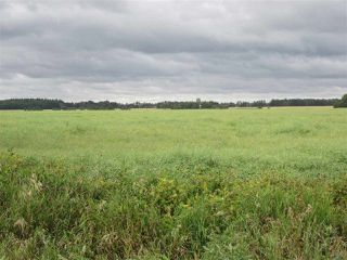 Photo 6: RR 253 Twp 620: Rural Westlock County Rural Land/Vacant Lot for sale : MLS®# E4130559