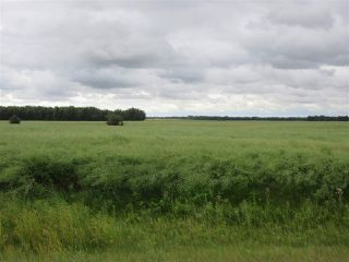 Photo 1: RR 253 Twp 620: Rural Westlock County Rural Land/Vacant Lot for sale : MLS®# E4130559