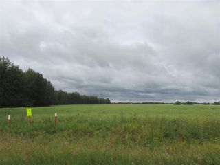 Photo 4: RR 253 Twp 620: Rural Westlock County Rural Land/Vacant Lot for sale : MLS®# E4130559