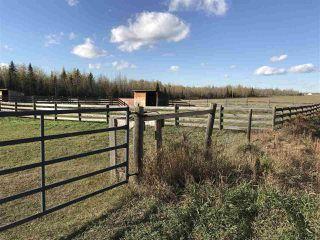 Photo 3: 57118 Range Road 231: Rural Sturgeon County Rural Land/Vacant Lot for sale : MLS®# E4132283