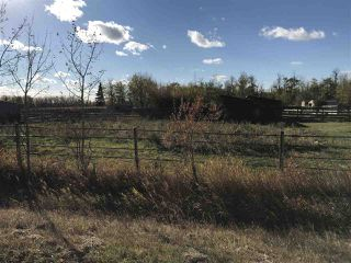 Photo 10: 57118 Range Road 231: Rural Sturgeon County Rural Land/Vacant Lot for sale : MLS®# E4132283