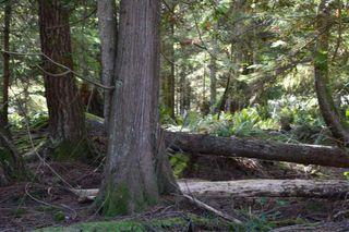 Photo 18: LOT 72 WEST BAY Road: Gambier Island Land for sale (Sunshine Coast)  : MLS®# R2313958