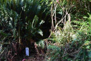 Photo 9: LOT 72 WEST BAY Road: Gambier Island Land for sale (Sunshine Coast)  : MLS®# R2313958