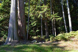 Photo 11: LOT 72 WEST BAY Road: Gambier Island Land for sale (Sunshine Coast)  : MLS®# R2313958