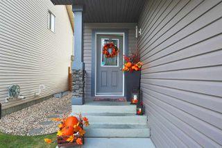 Photo 27: 1959 67 Street in Edmonton: Zone 53 House for sale : MLS®# E4132921