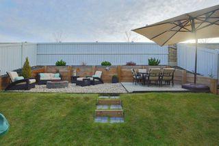 Photo 6: 1959 67 Street in Edmonton: Zone 53 House for sale : MLS®# E4132921