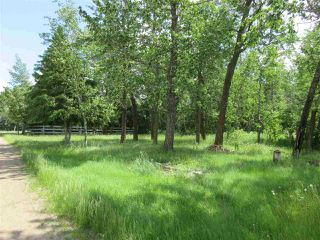 Photo 23: RR 215 Twp 590: Rural Thorhild County House for sale : MLS®# E4138565