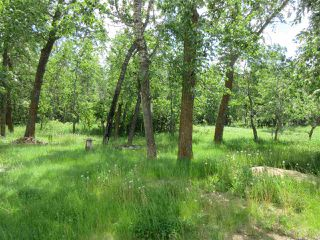 Photo 22: RR 215 Twp 590: Rural Thorhild County House for sale : MLS®# E4138565