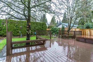Photo 18: 9645 206 Street in Langley: Walnut Grove House for sale : MLS®# R2328940