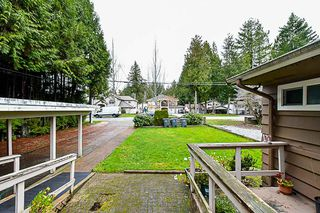 Photo 6: 15032 92 Avenue in Surrey: Fleetwood Tynehead House for sale : MLS®# R2339288