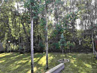 Photo 4: 1157 WESTERRA Link: Stony Plain House for sale : MLS®# E4144218